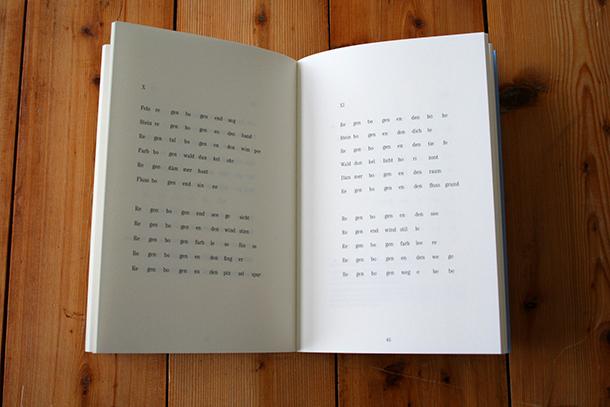 Matthias Dieterle das Buch nie genug 2