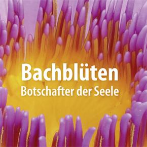 Buchherstellung: Bachblüten – Botschafter der Seele